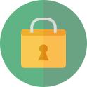 Main feature icon security